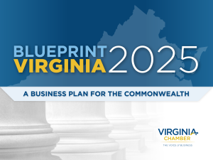 Image result for blueprint virginia 2025